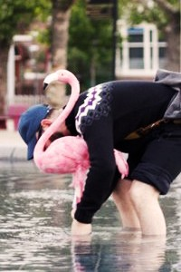 maw_flamingo_feat